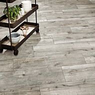 P10819 Kenwood Ash Matt Glazed Porcelain 300x1200x10mm